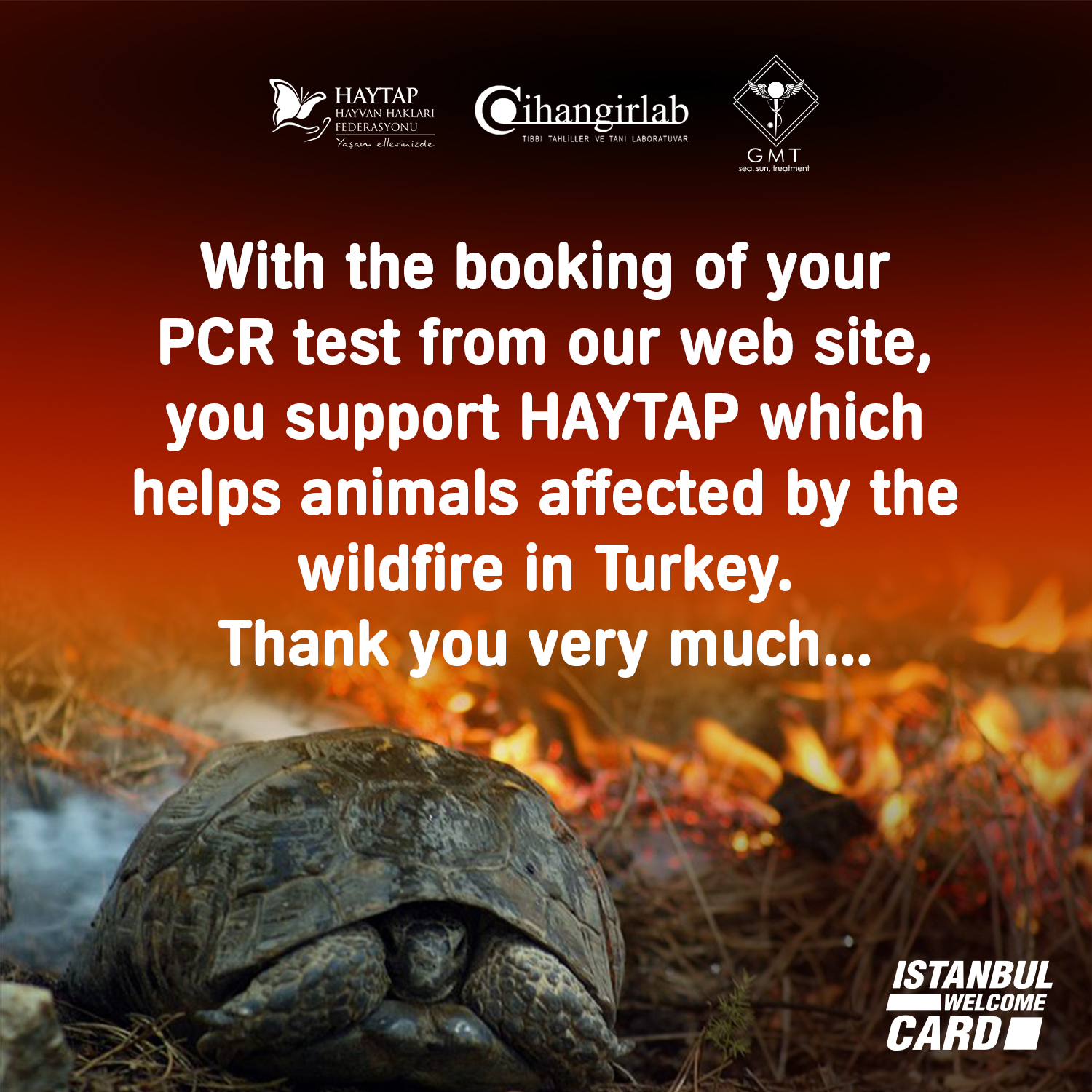 With the booking of your PCR test from our web site, you support HAYTAP which helps animals affected by the wildfire in Turkey. Thank you very much...